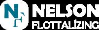 Autópark kezelés, Tartós Bérleti Konstrukciók – Nelson Flottalízing Kft. Logo